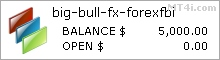 big-bull-fx Results